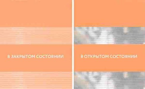 Базик морковный